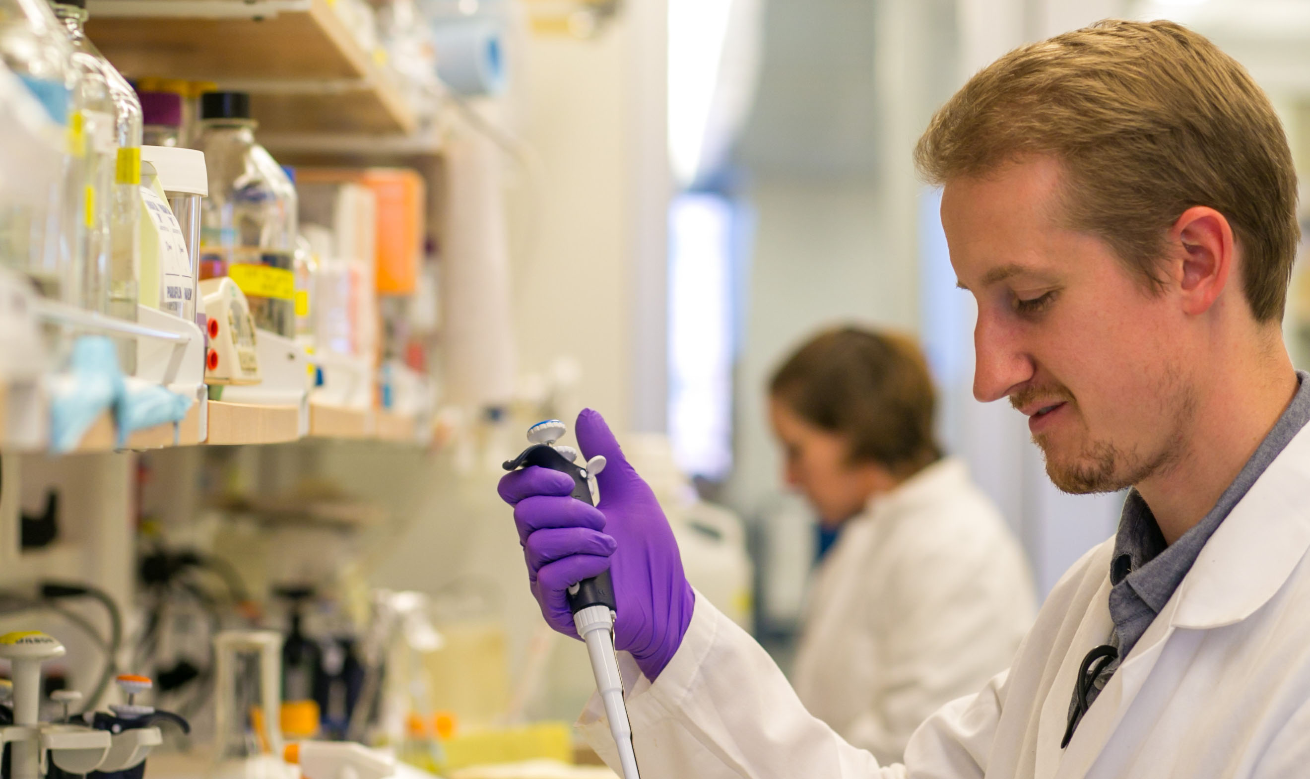Applications Open for 2019 Lupus Research Grants | Lupus